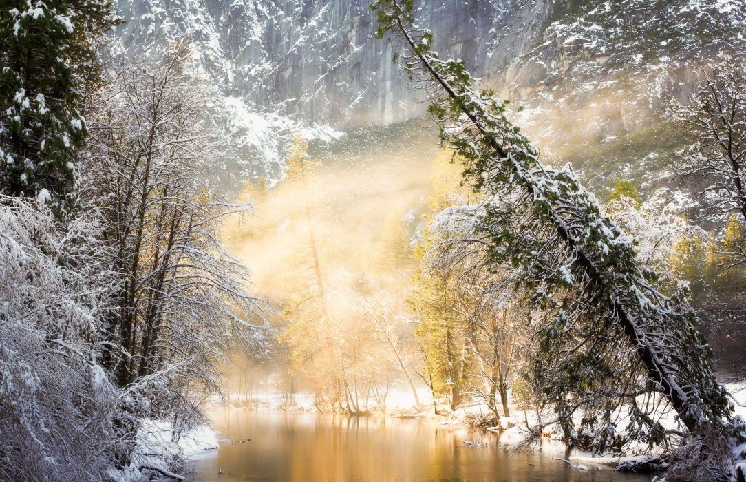Seasons Winter Nature wallpaper
