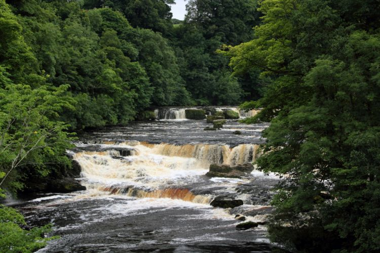 Waterfalls England Aysgarth Falls Yorkshire Nature wallpaper