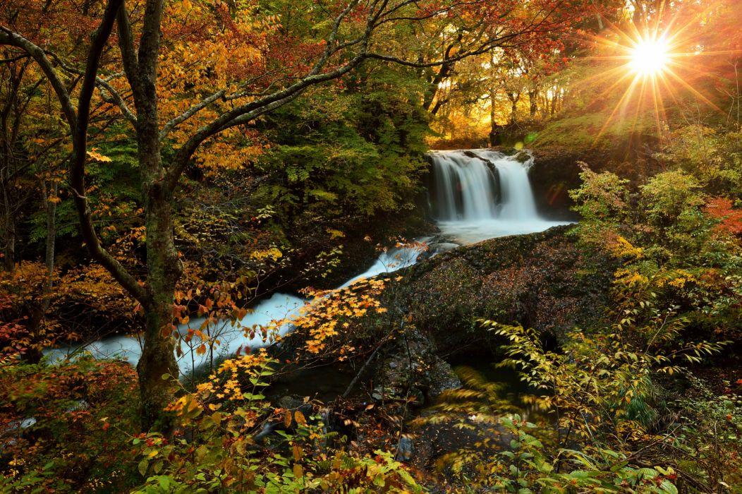 Waterfalls Forests Autumn Sun Nature wallpaper