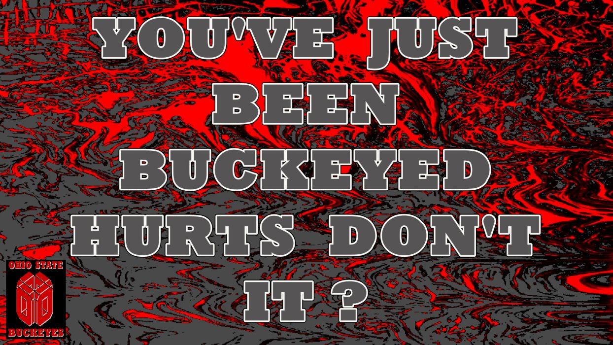 OHIO STATE BUCKEYES college football (10) wallpaper