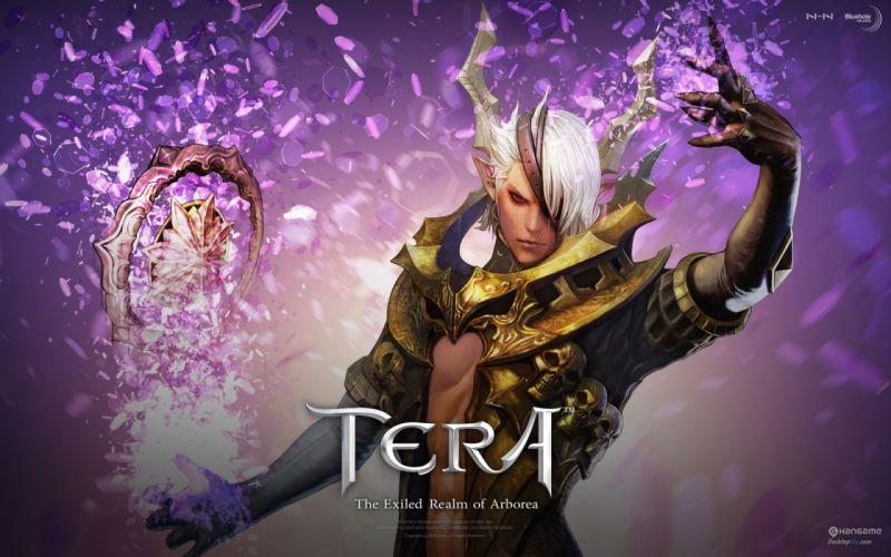 TERA ONLINE fantasy adventure game (53) wallpaper