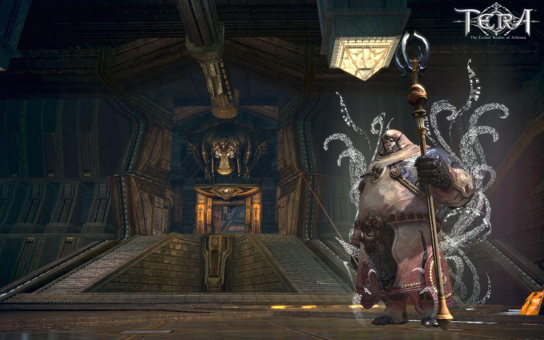 TERA ONLINE fantasy adventure game (58) wallpaper