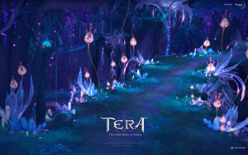 TERA ONLINE fantasy adventure game (105) wallpaper