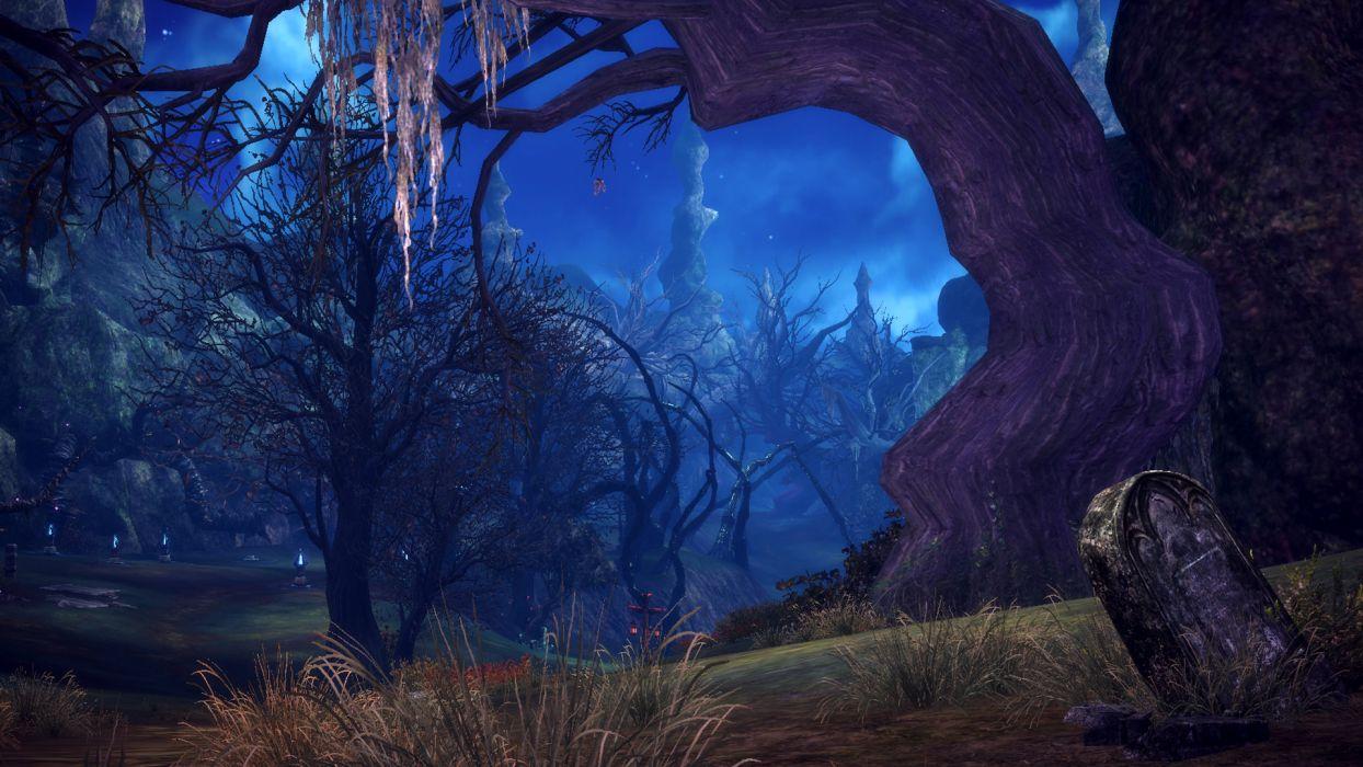 TERA ONLINE fantasy adventure game (137) wallpaper