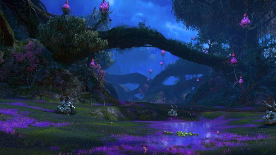 TERA ONLINE fantasy adventure game (143) wallpaper