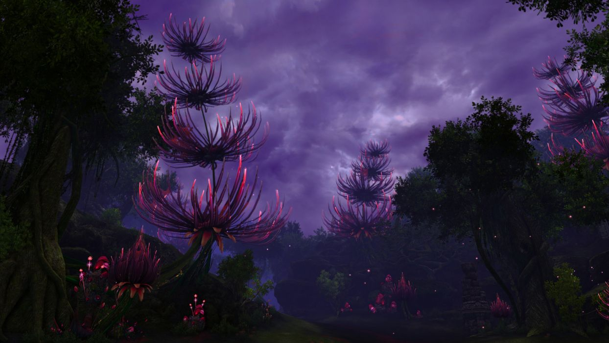 TERA ONLINE fantasy adventure game (183) wallpaper