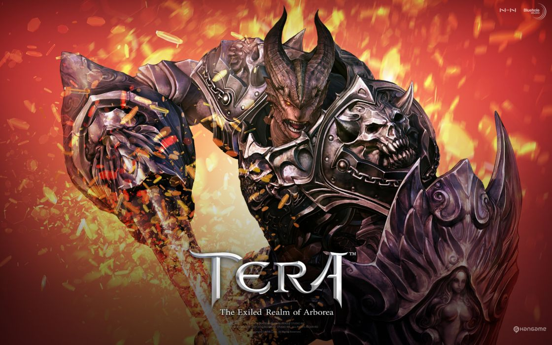 TERA ONLINE fantasy adventure game (202) wallpaper