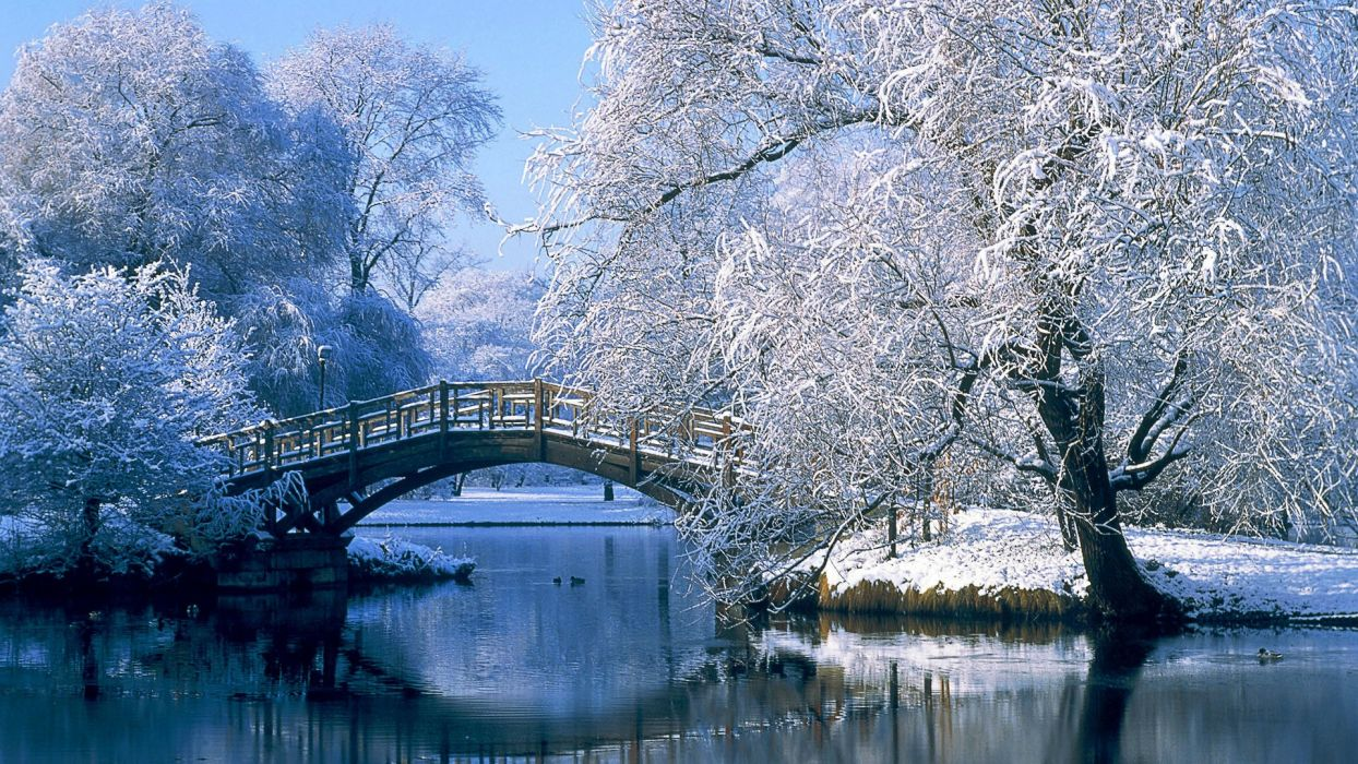 landscapes nature winter snow bridges wallpaper