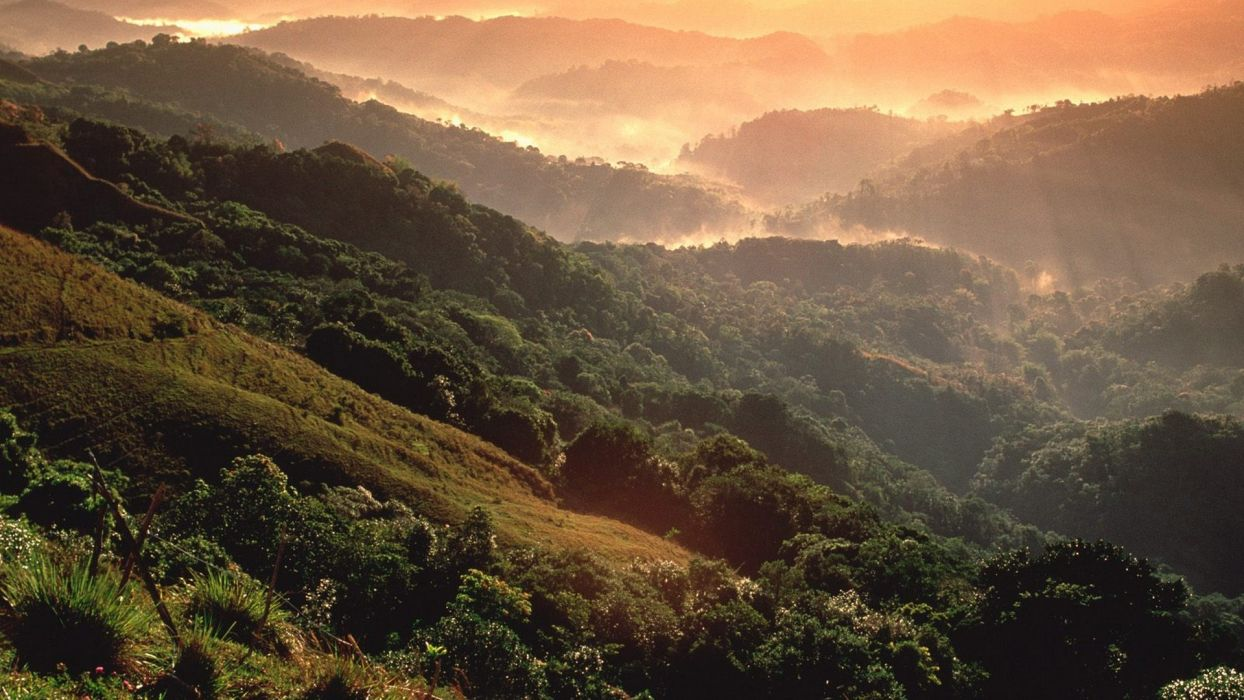 mountains Puerto Rico rainforest wallpaper