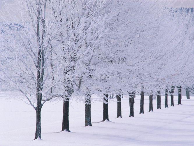 winter TV shows wallpaper