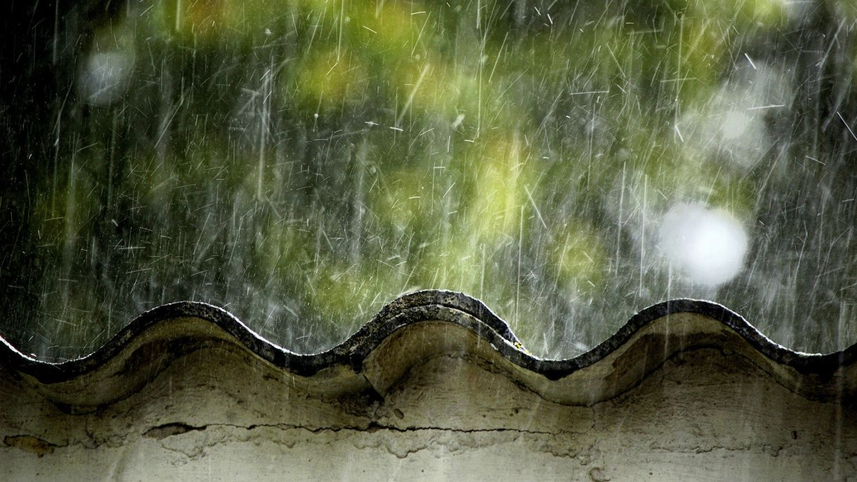 rain leaves weather rooftops wallpaper