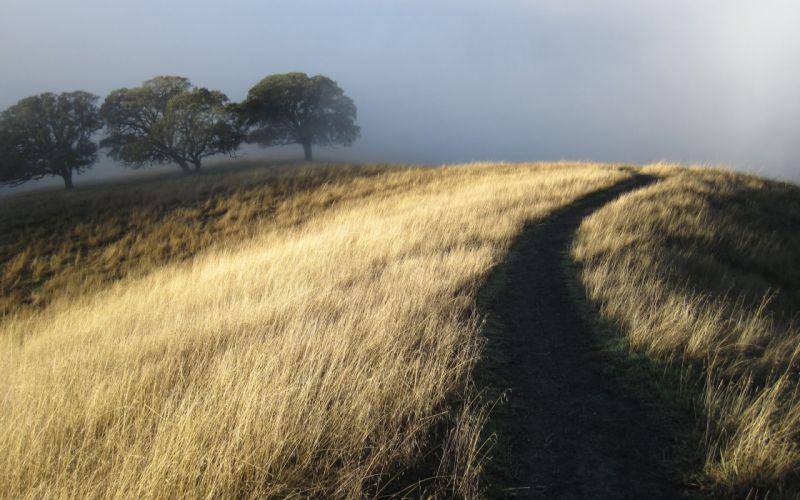 landscapes fog wallpaper