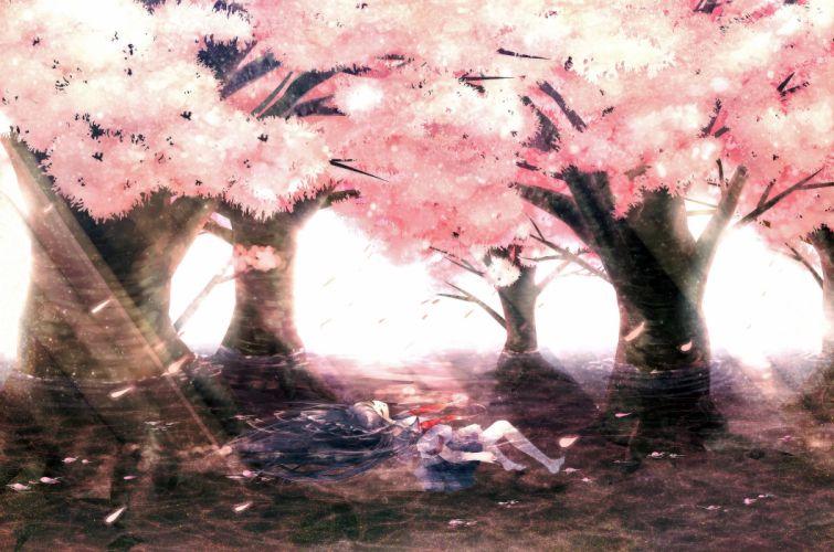 water trees anime wallpaper