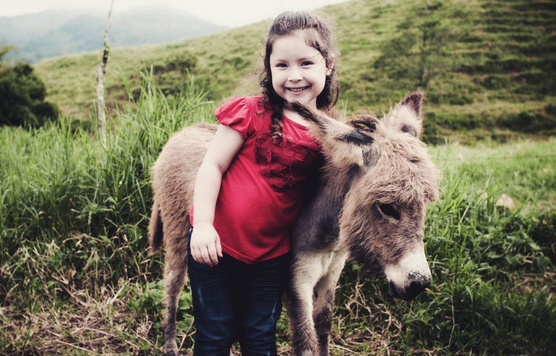 Mi Burrito Sabanero cute little girl donkey baby babe wallpaper