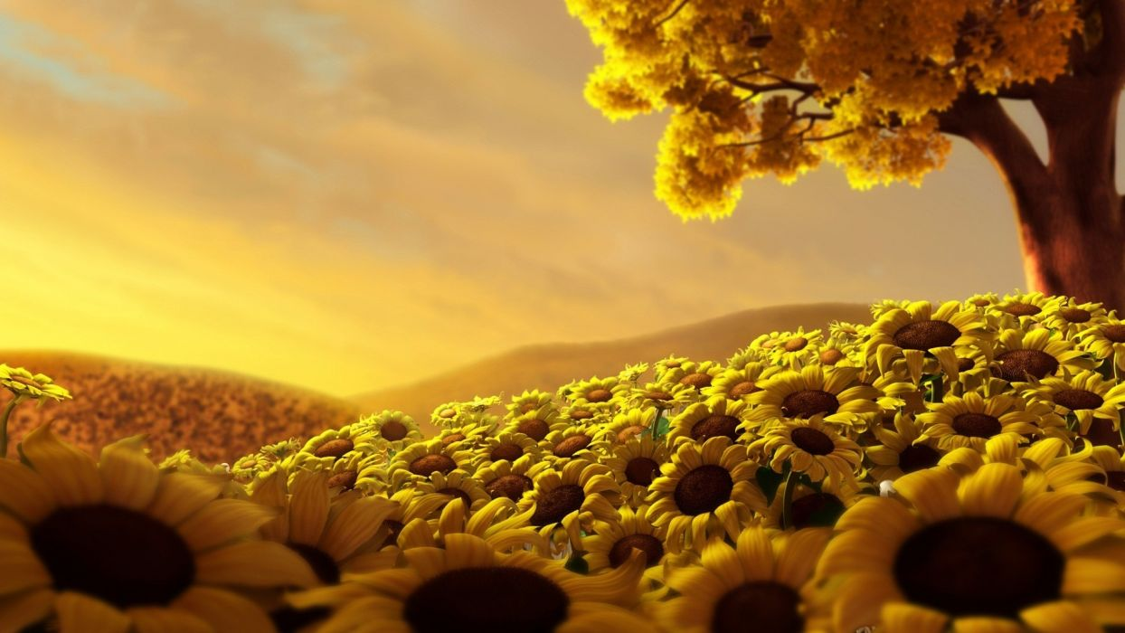 nature Sun trees sunflowers wallpaper