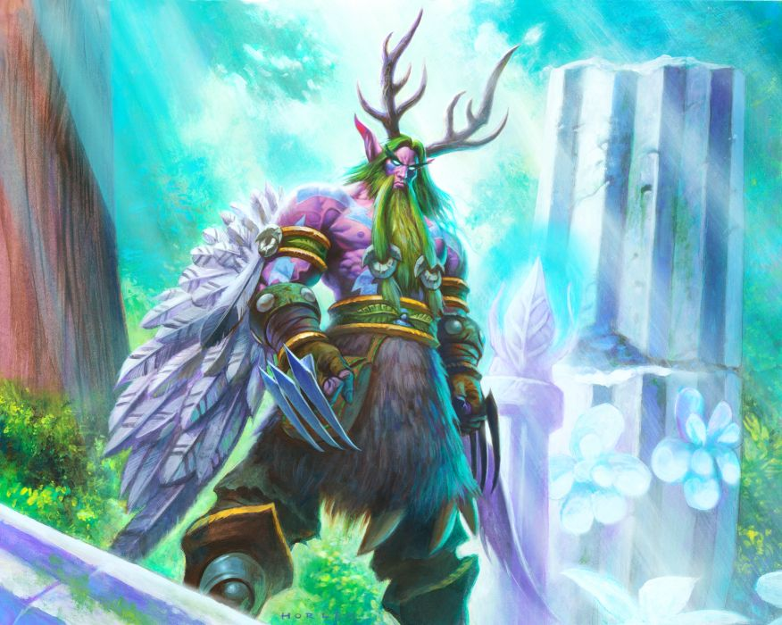 HEARTHSTONE HEROES OF WARCRAFT fantasy