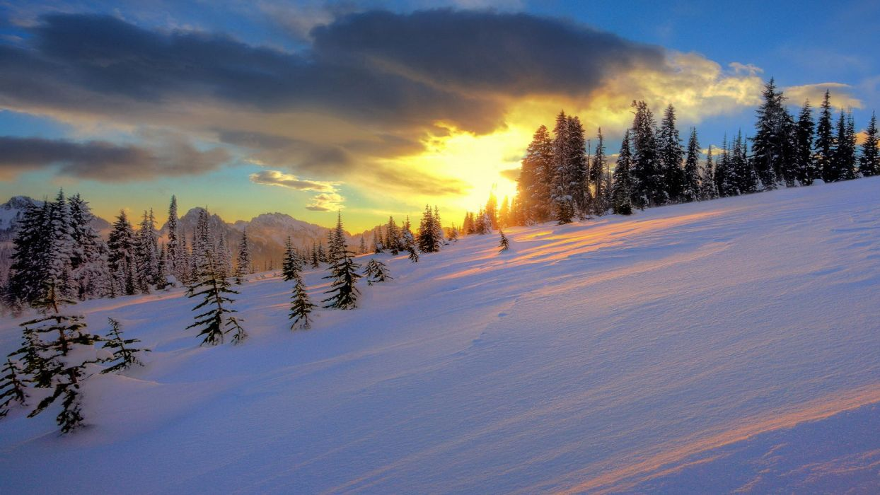 sunset landscapes snow trees hills wallpaper