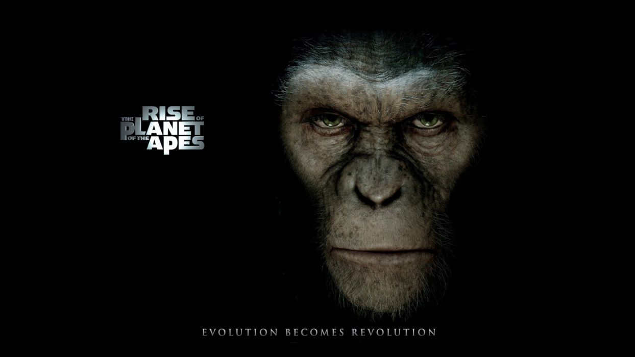 movies Rise of the Planet of the Apes wallpaper
