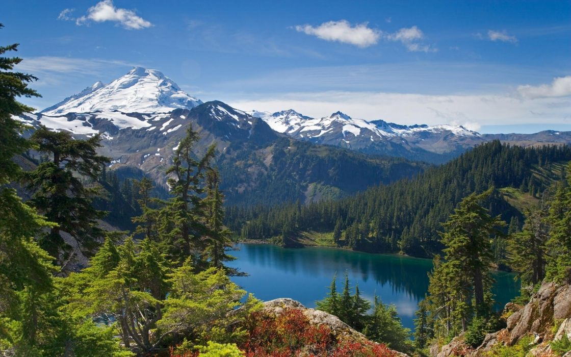 mountains landscapes nature trees forests between snowy peaks wallpaper