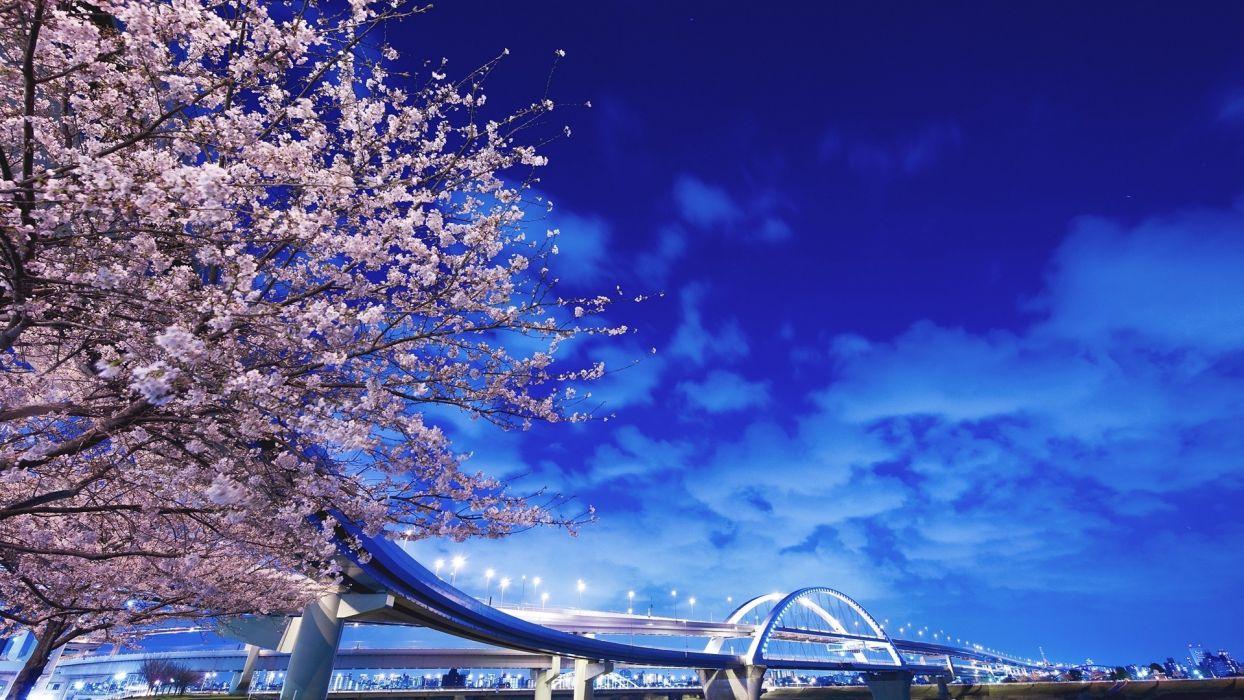 Japan Sakura Hokkaido wallpaper