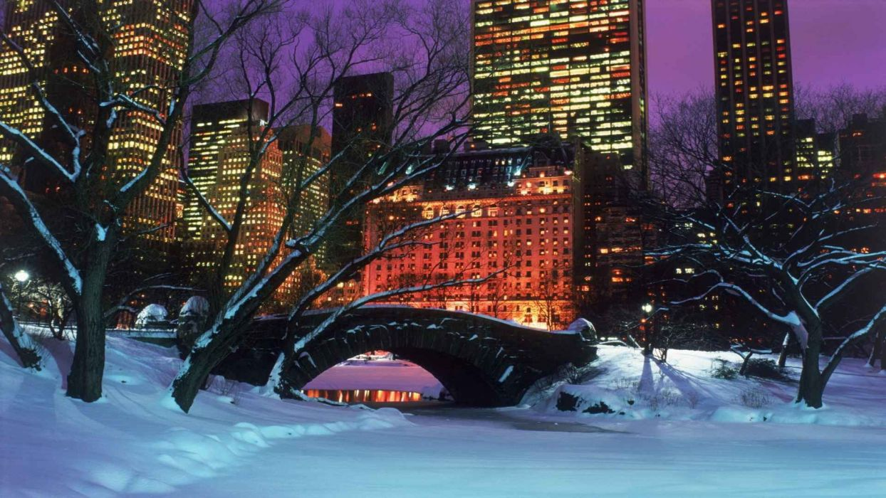 New York New York Central Park Android Wallpapers