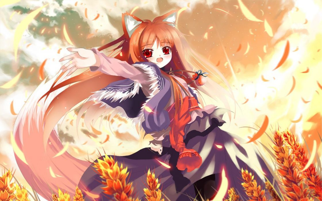 Spice and Wolf animal ears Holo The Wise Wolf inumimi Shino (Eefy) wallpaper
