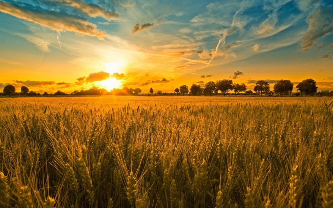 sunset clouds landscapes nature harvest wallpaper