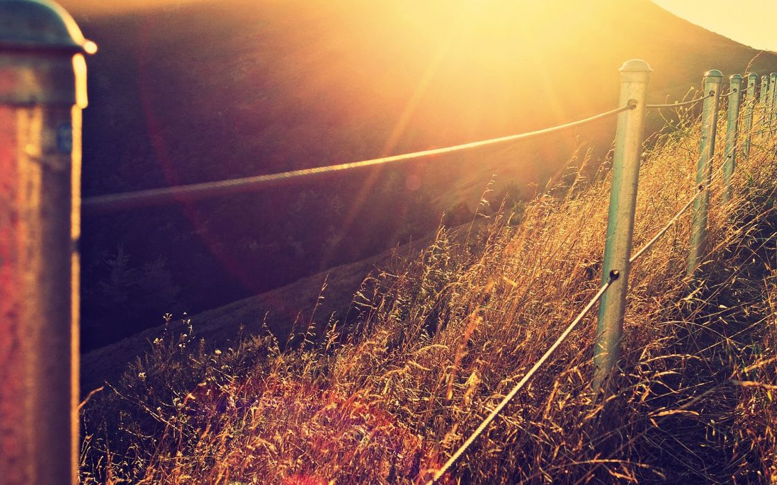nature fences sunlight wallpaper