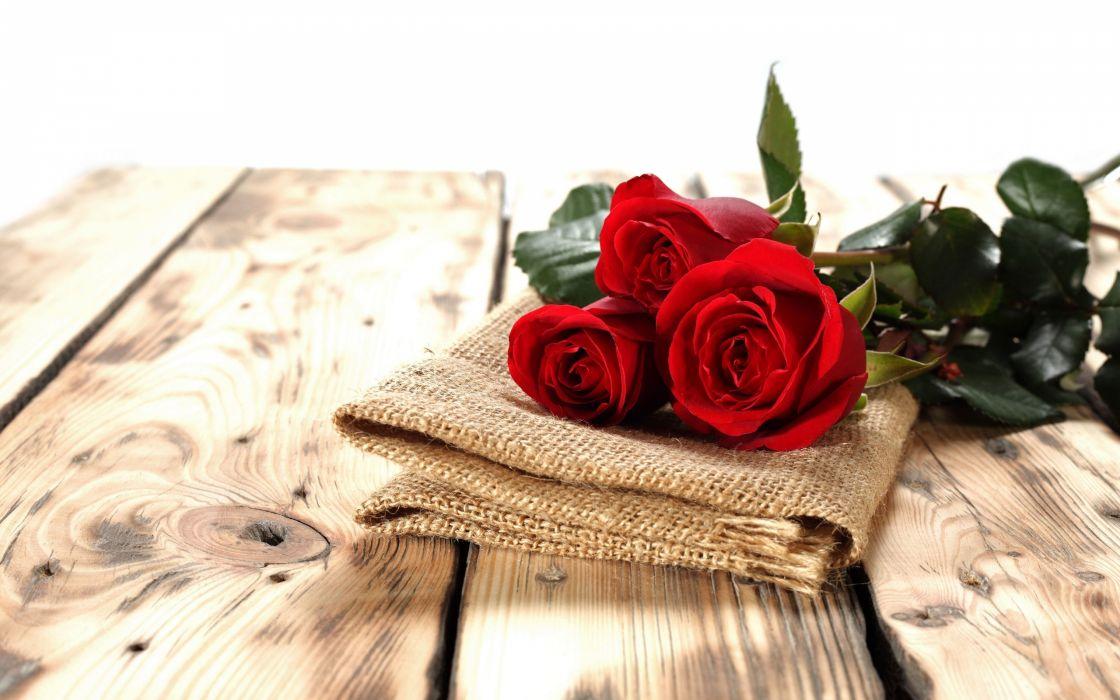 roses buds tissue board   d wallpaper