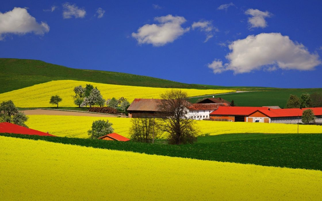 fields meadows houses wallpaper