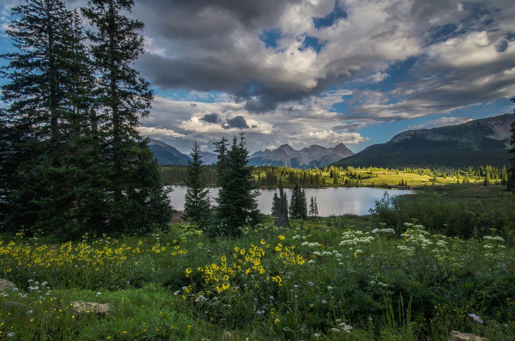 Lake mountains trees field flowers landscape wallpaper ...