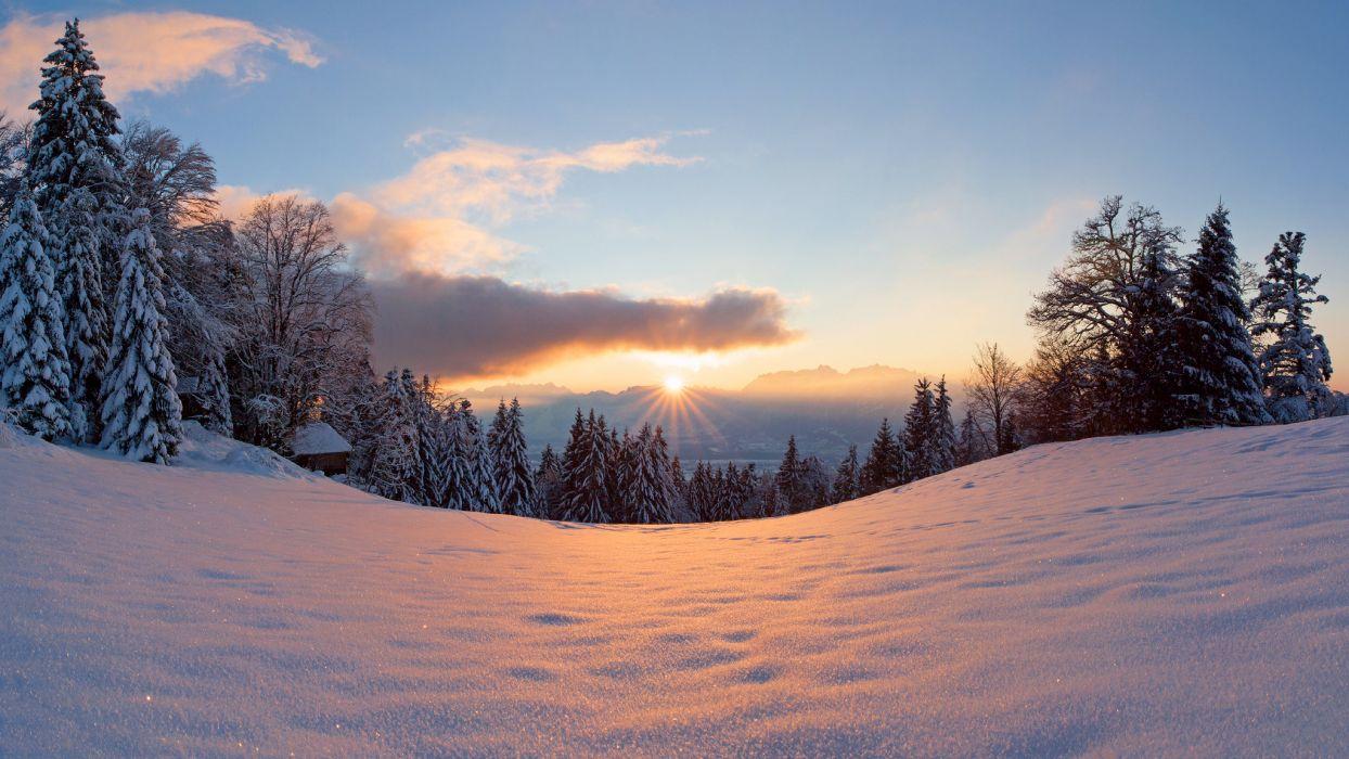 Winter snow light trees sun forest wallpaper | 2048x1152 | 217126 | WallpaperUP