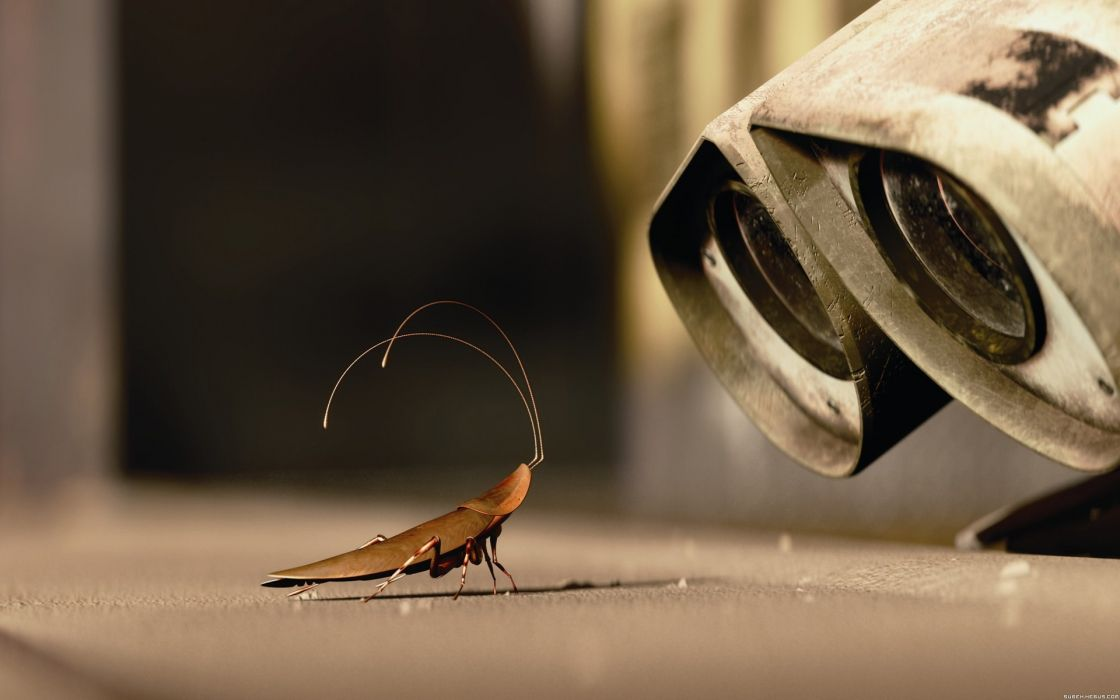 cartoons movies Wall-E insects wallpaper