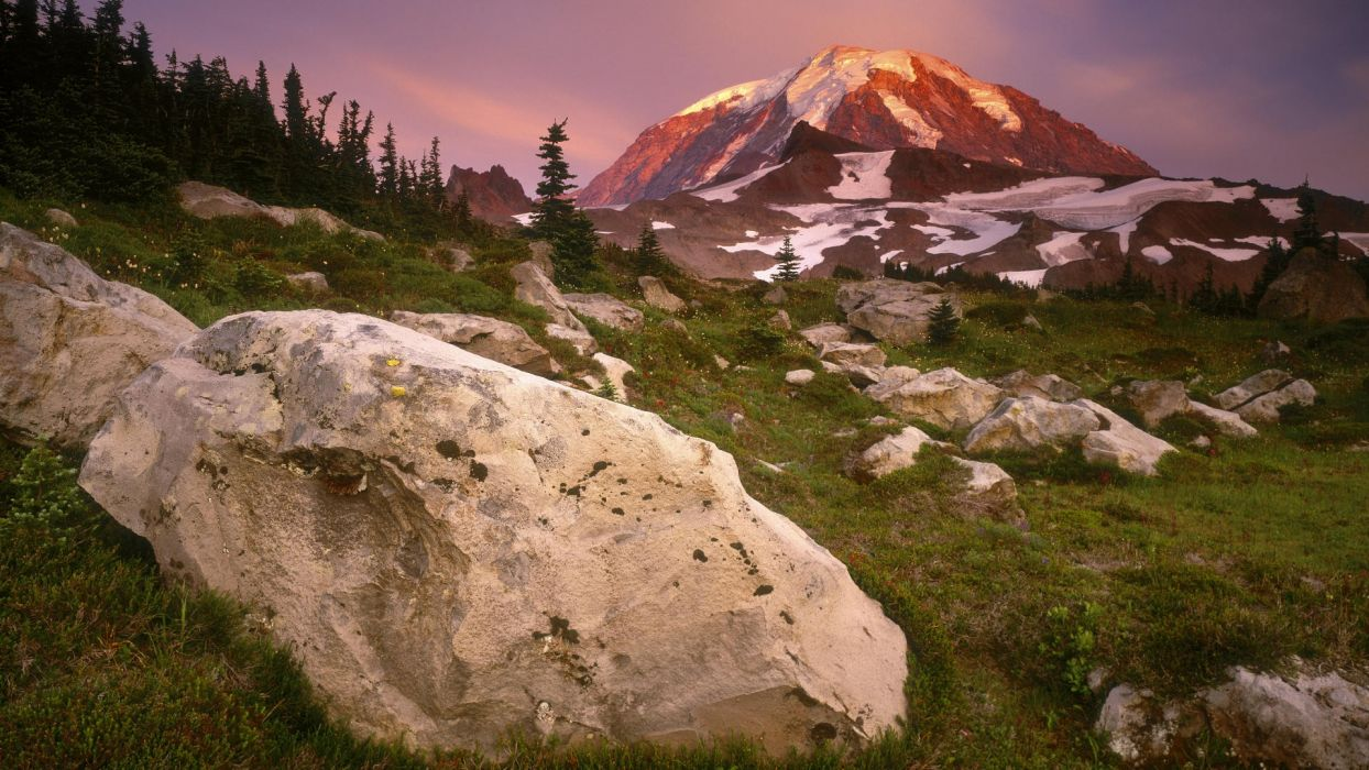 sunset meadows spray parks Washington Mount Rainier wallpaper