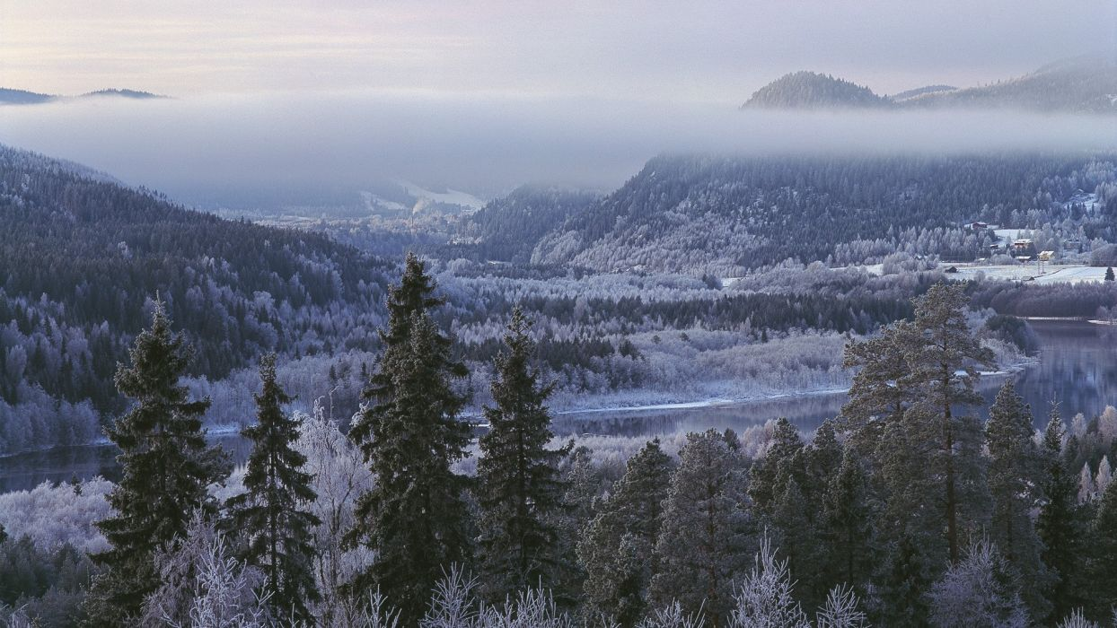 mountains winter snow trees forests hills frost rivers wallpaper