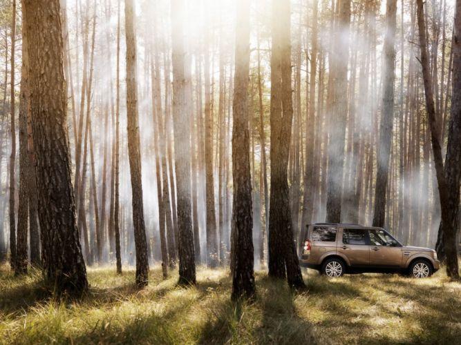 trees cars wallpaper
