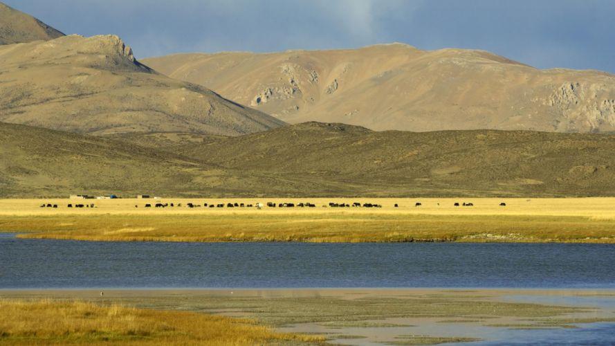 nature Tibet wallpaper
