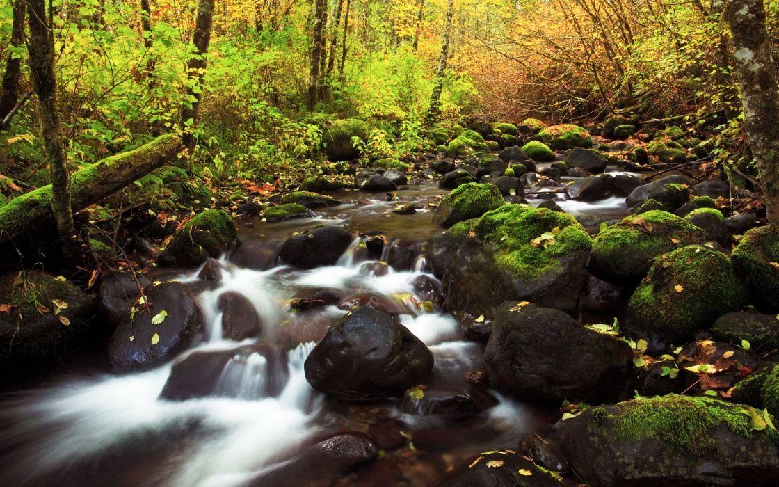 stones The River wallpaper
