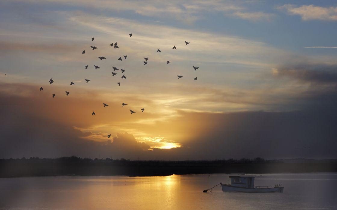 Birds Sunset Boat Lake wallpaper