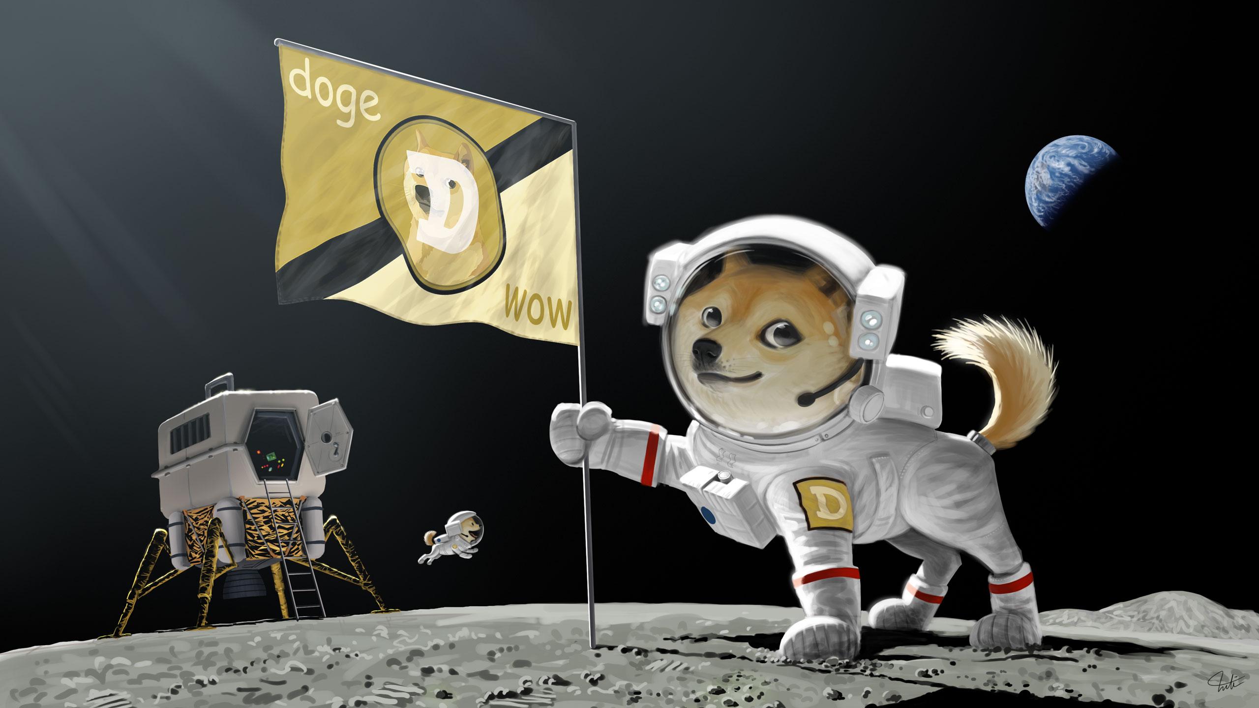 c5bc6e621599cd1f88d1f7786261f16c doge dog astronaut meme moon landing earth planet flag wallpaper,Doge Meme Wallpaper