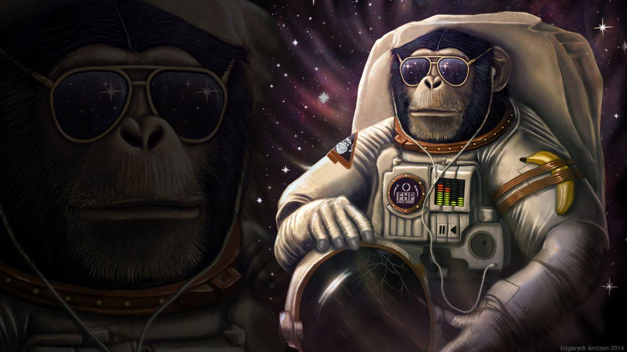 Monkey Sunglasses Astronaut WTF Banana wallpaper