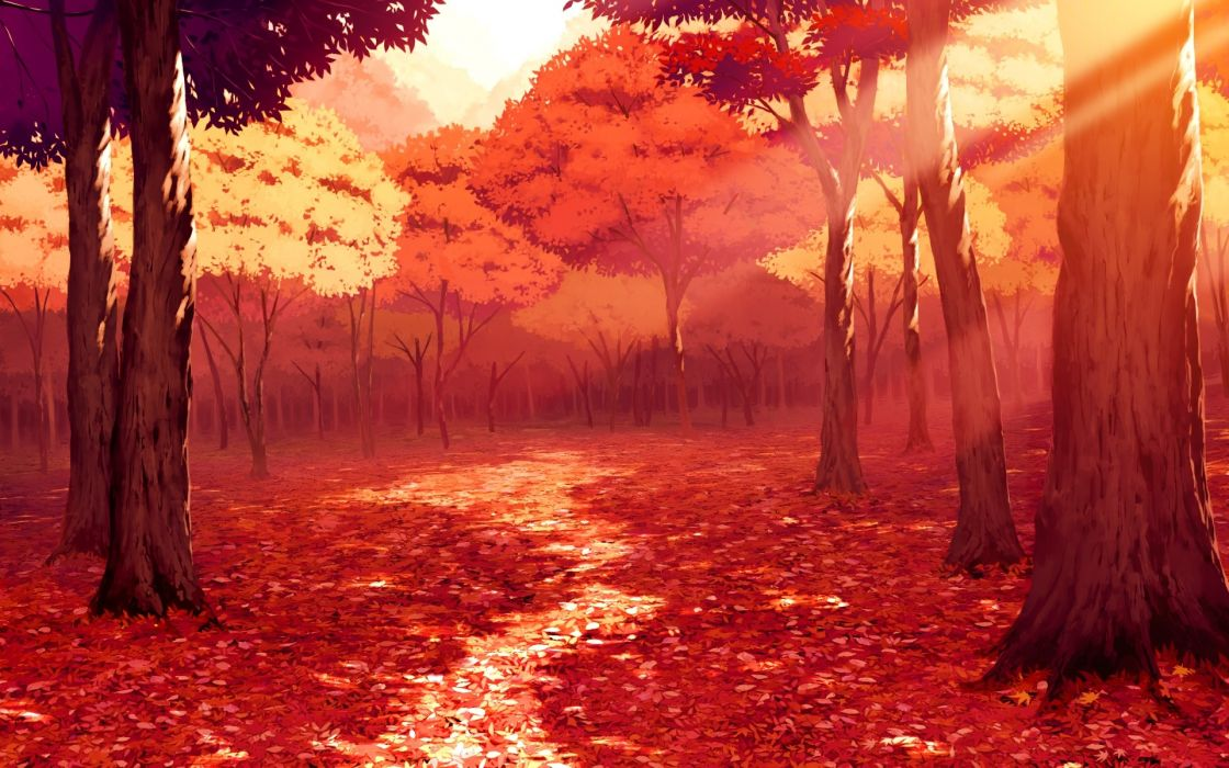 Trees Autumn forest Drawing wallpaper