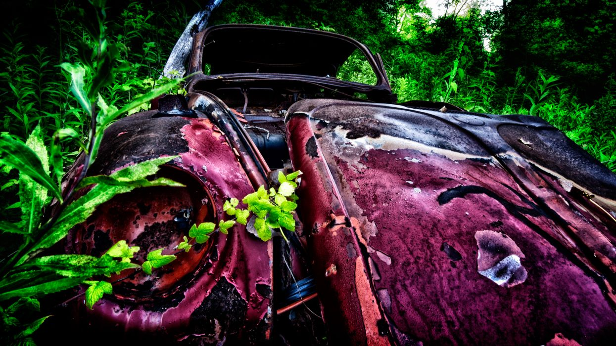 Volkswagen Bug Volkswagen Classic Car Classic Abandon Deserted wallpaper