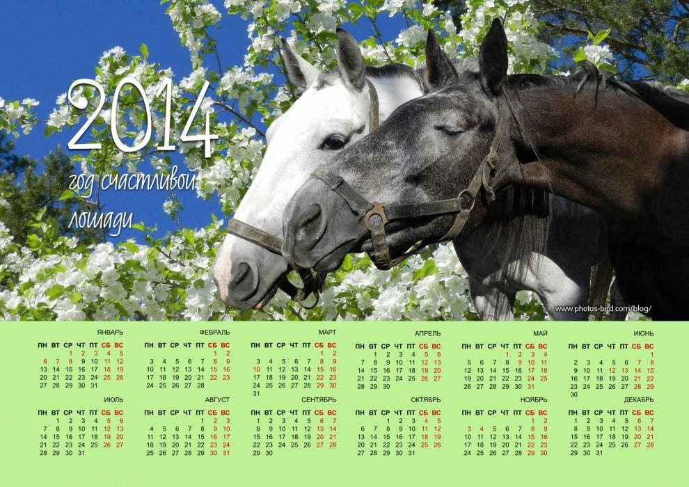 Calendar 2014 horse wallpaper