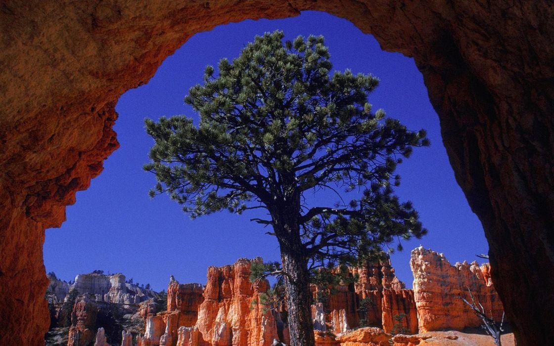 landscapes nature Bryce Canyon Utah wallpaper