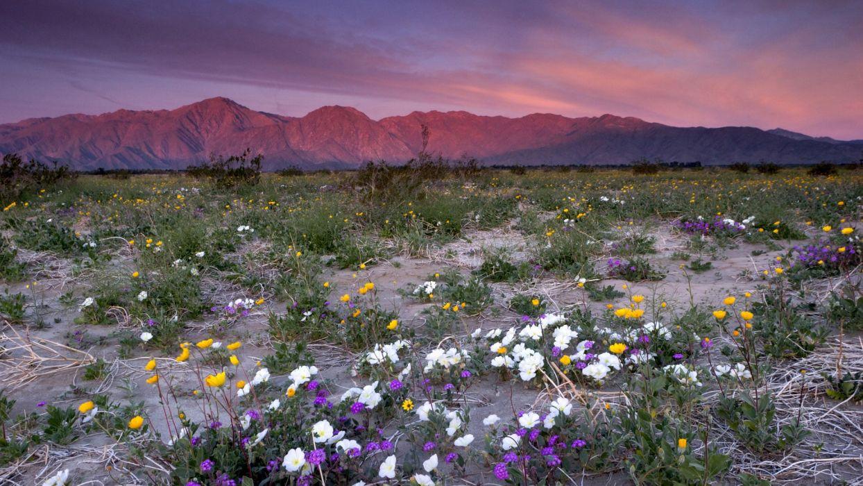 mountains deserts California Rosa parks Santa wallpaper
