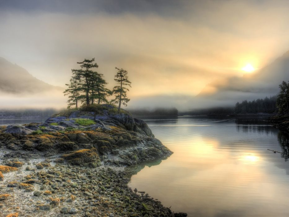 sunset landscapes trees British Columbia low tide wallpaper