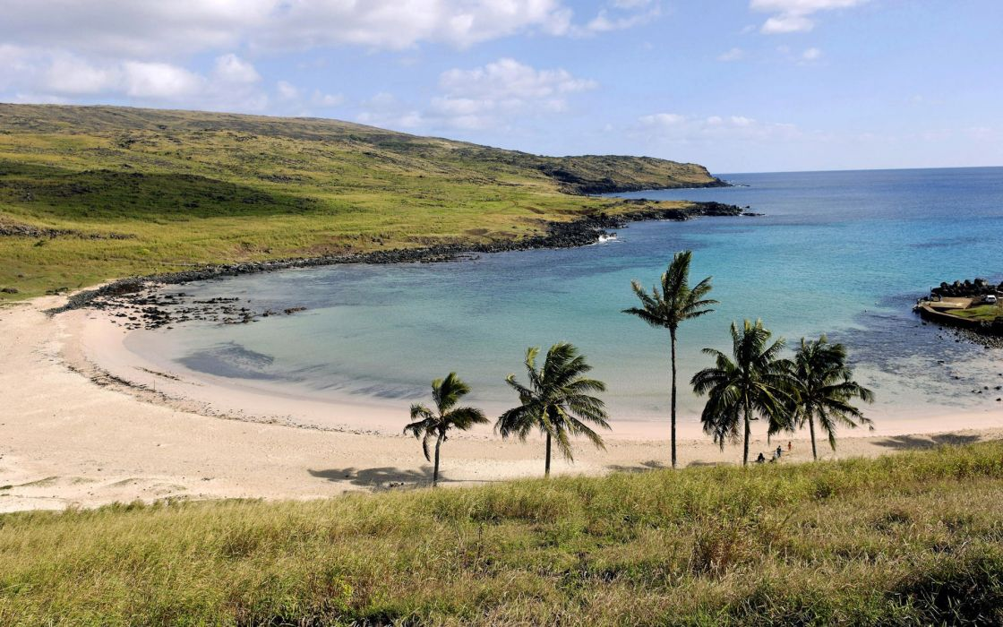 landscapes sand palm trees beaches wallpaper