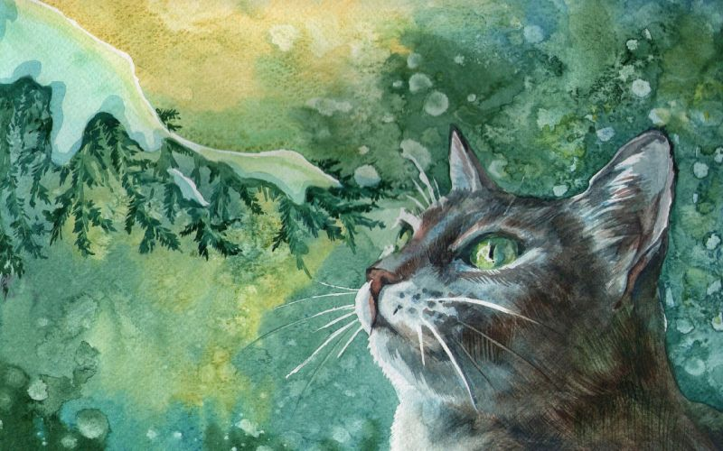 art painting winter cat tomcat green eyes mustache branch tree snow snowflakes miracles_ wallpaper