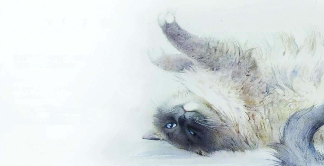 painting watercolor art cat stretching wallpaper